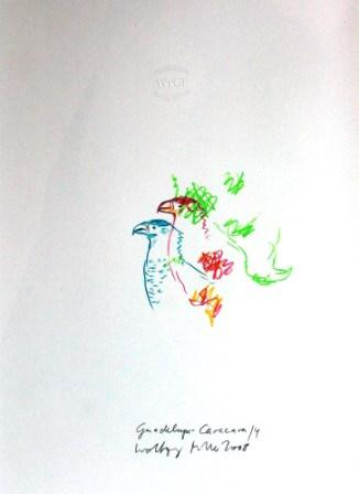 web_WM 10 Guadalupe Caracara